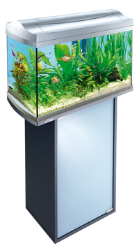 Ou_installer_son_aquarium_2